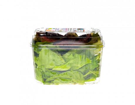 Bio-salată ușor amăruie Biodrumbravă