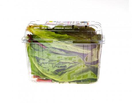 Bio-salată ușor acrișoară Biodrumbravă