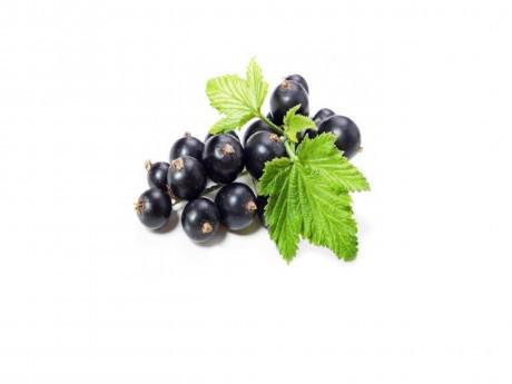 Coacăze negre Bio Eco Fruct Sultana