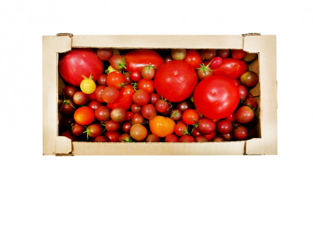 Full mix de roșii Gurbănești Lădiță - Multumesc!