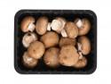 Ciuperci brune BIO