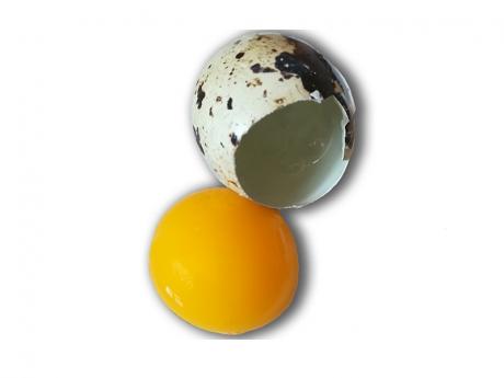 Ouă de prepeliță de la Prepelițu