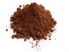 Cacao pudra