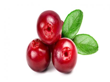 Fructe de merișoare deshidratate