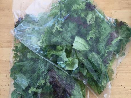 Salata si Spanac mix Ecokult