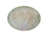 Varza albă Legume Fructe Martin