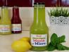 Limonadă cu Mentă și Miere Ohvaz