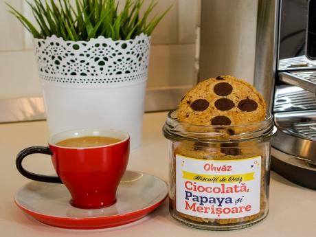Biscuiti cu Ciocolată, Papaya, Merișoare Ohvaz