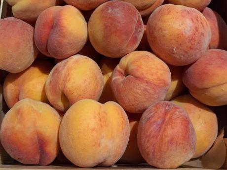 Piersici Legume Fructe Martin