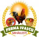 Manufacturer - FERMA IVAȘCU