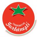 Manufacturer - CAP GURBĂNEȘTI